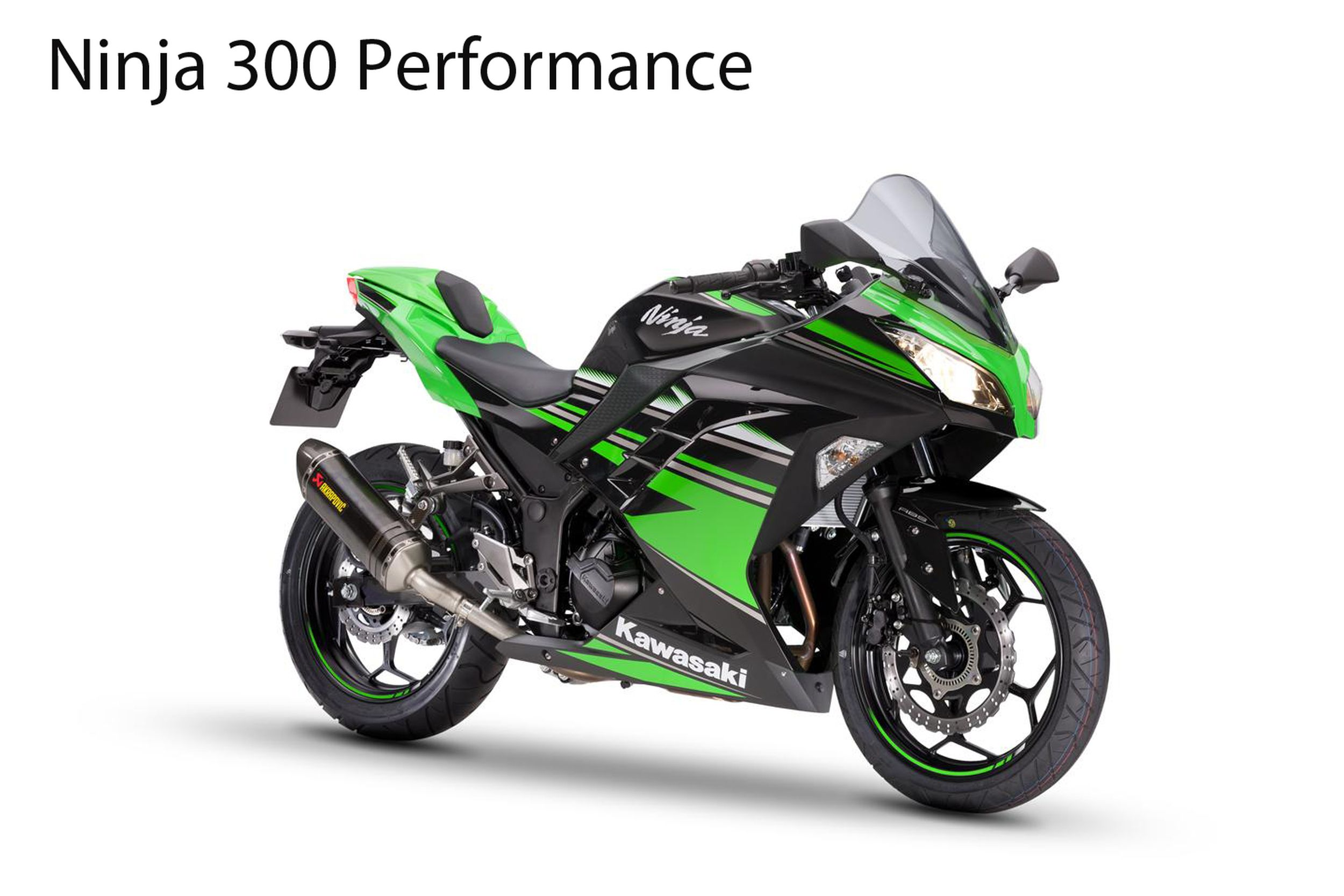 Kawasaki Ninja  R Manual