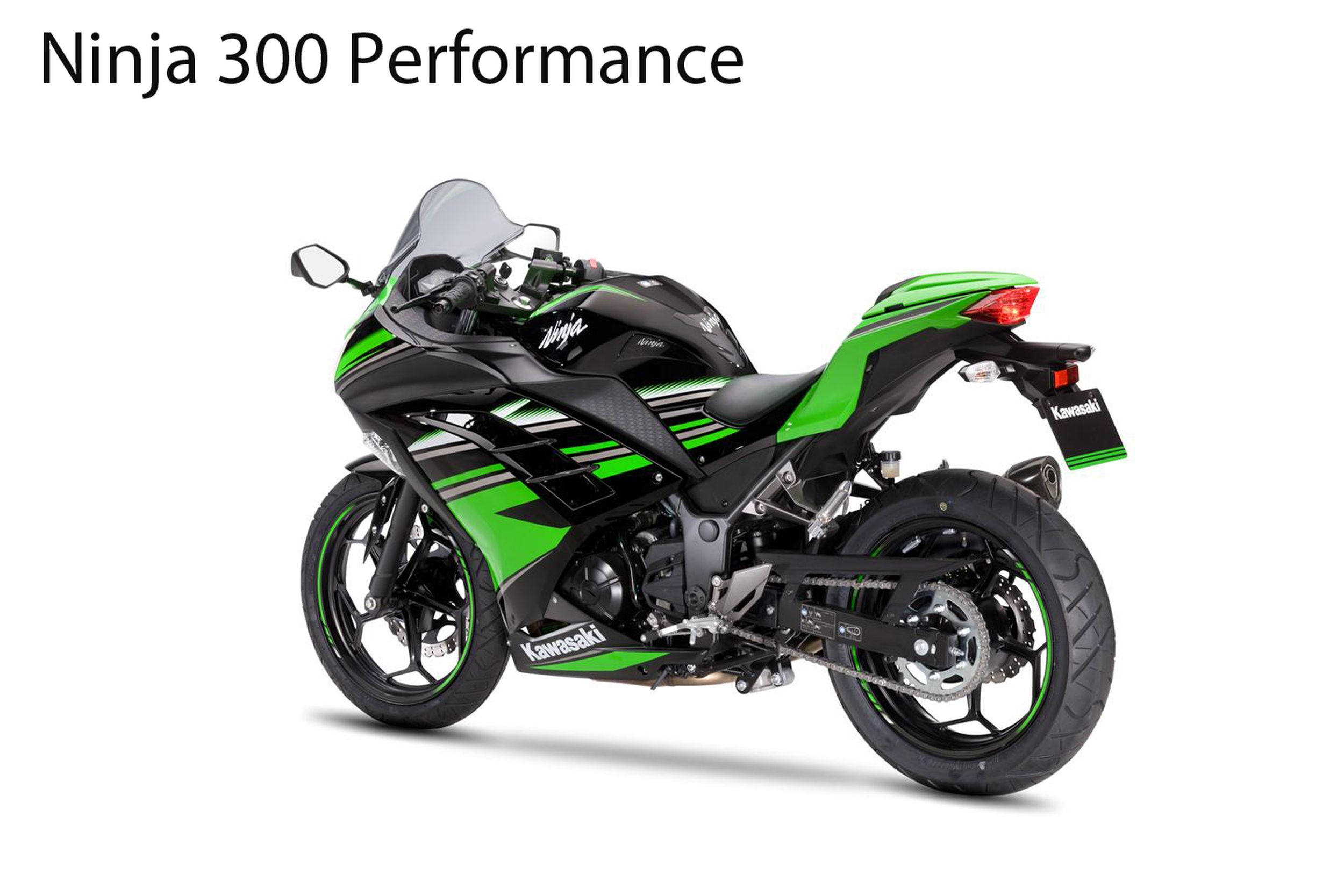 ninja 300 daten