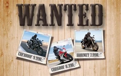 Wanted Modelle