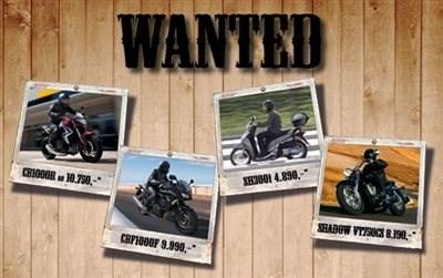 Wanted Modelle zum Sonderpreis !