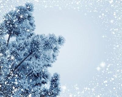 Wintereinlagerung ab sofort